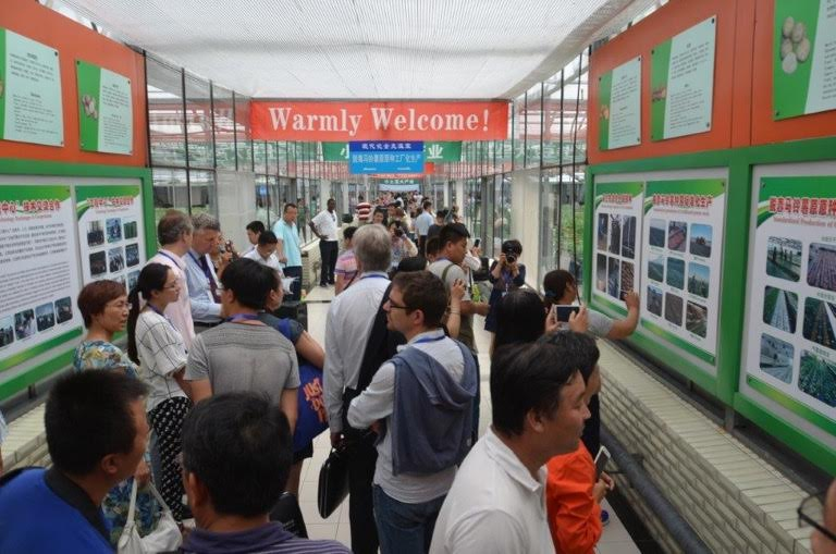 Potato-workshop-China-august-2015